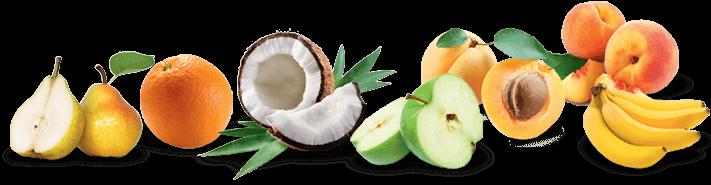 Fruits coco tropical
