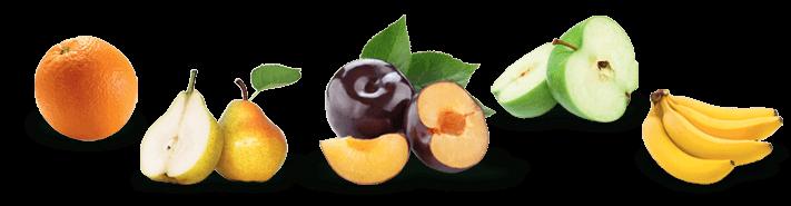 Fruits du verger
