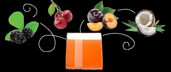 Jus multifruits composition Biofrutti